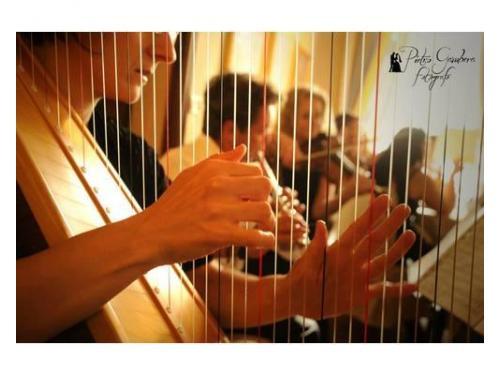 Professionisti della musica al vostro servizio