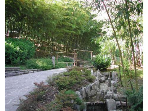Il giardino botanico