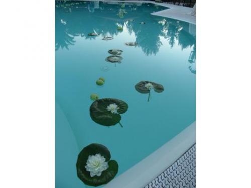 Ninfee in piscina effetto acqua