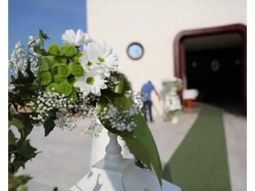 Ramoscelli bianchi e verdi per esterno