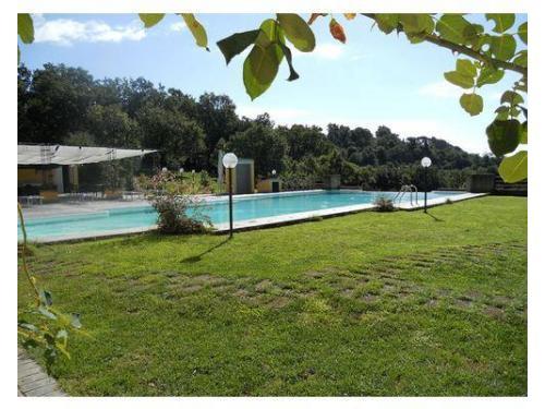 Veduta del giardino bordo piscina