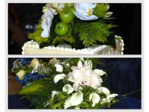 Composizioni di fiori e frutta