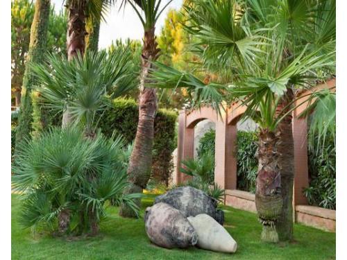 Un giardino da sogno