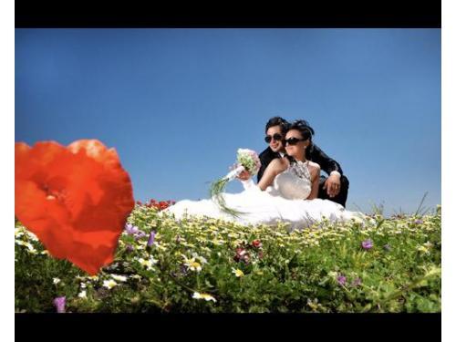 Simpaticissima coppia di sposi su una distesa di fiori