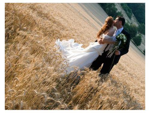 Sposi campo di grano