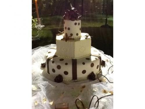 La torta in dettaglio