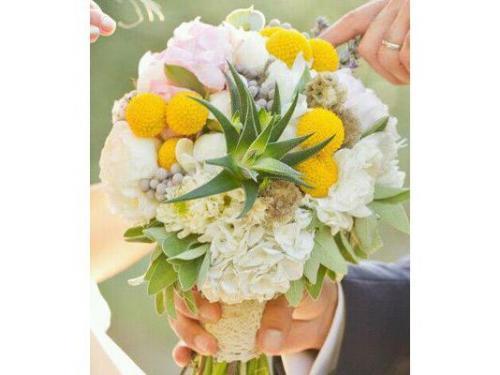 Bouquet originale con pianta grassa